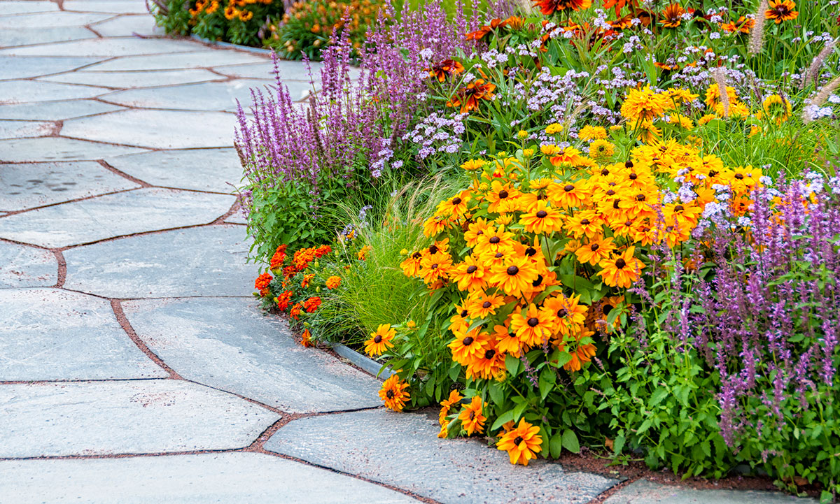 landscaping - softscapes and hardscapes