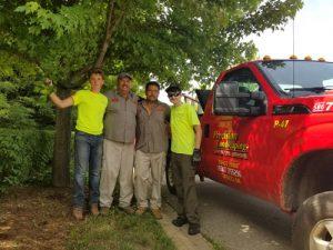 Precision Landscaping Crew